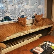 Luis und Lenny - noch ahnungslos :-)